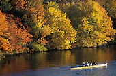 Four man crew on the Charles River with fall colors, Boston, MA.