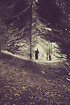 Male figure walking alone through pine forest