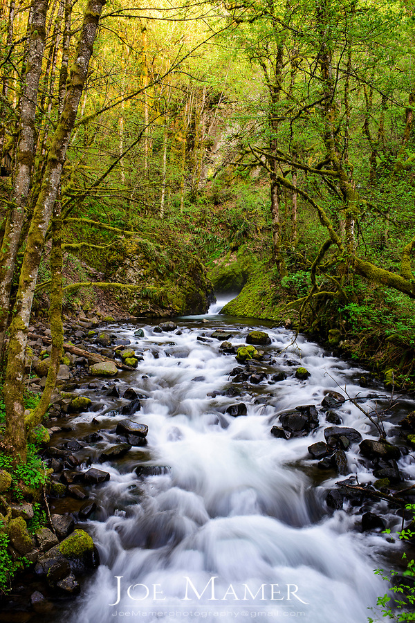 Bridal Veil Creek along the Columbia River Gorge.
