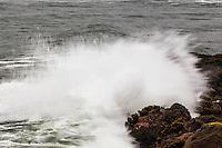 Spray flies from a wave crashing onto the rocky shoreline at Bean Hollow State Beach along the California coast.