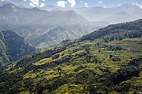 UTTARAKHAND: The terraced slopes near Munsyari. Photo by Michael Benanav.