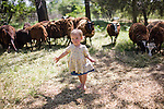 Ivy Ferrell plays with the sheep at their home in Lincoln, CA May 13, 2009.