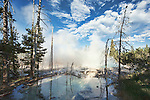 Cistern Spring, Norris Geyser Basin is easily viewed close-up from the boardwalk trail.  Norris is the hottest geyser basin and the coolest place in Yellowstone.  Due to an on-going eruption of Steamboat Geser, Cistern Spring is nearly empty here.  Yellowstone National Park, the first National Park in the world, still enthrals over three million visitors a year with it's geothermal features,wildlife,  rugged mountains, deep canyons and stunning ecosystem.