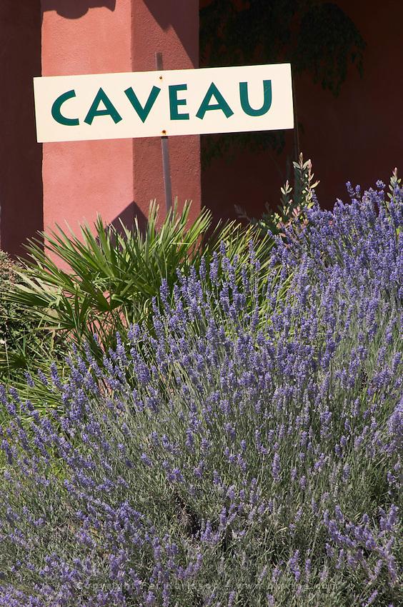 wine shop w lavender chateau de nages rhone france