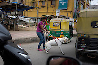 A dog owner tries to control her dog on a street in Bangalore, India.
