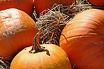 Pumpkins with hay