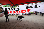 """A dog passes by a banner that reads: """"No to the electoral fraud"""" during the National Convention against the imposition of Enrique Pena Nieto in San Salvador Atenco, Mexico state, July 14, 2012. More than two thousand people from twenty five states attended the Convention to plan actions in order to prevent Pena Nieto to take office on December 1, 2012 as they accuse him from buying ballots and money laundering during the elections . Photo by Heriberto Rodriguez"""