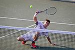 2014 M DI Tennis