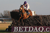 Keeverfield ridden by Miss Samantha Drake leads during the PointToPoint.co.uk Hunters Chase - Horse Racing at Huntingdon Racecourse, Cambridgeshire - 23/02/12- MANDATORY CREDIT: Gavin Ellis/TGSPHOTO - Self billing applies where appropriate - 0845 094 6026 - contact@tgsphoto.co.uk - NO UNPAID USE.