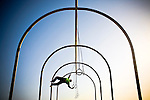 A gymnast works out on the rings at sunset in Santa Monica, Calif.