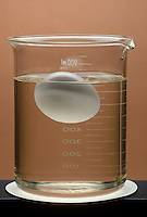 BUOYANCY AND DENSITY<br /> Eggs Floating in Na2SiO3<br /> Placing eggs in a beaker of Sodium Silicate (Na2SiO3) will preserve them for an extended period of time. The density of an egg is less than that of the solution causing the egg to float on top.
