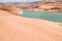 textured red sandstone above lake Powell