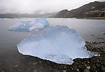 Icebergs, Prince William Sound, Alaska