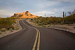 Pinkley Peak along North Puerto Blanco Drive in Organ Pipe Cactus National Monument, Arizona