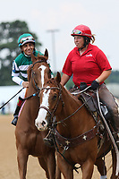 HOT SPRINGS, AR - April 14: Stellar Wind #3 with jockey Victor Espinoza aboard walks in the post parade prior to the Apple Blossom Handicap at Oaklawn Park on April 14, 2017 in Hot Springs, AR. (Photo by Ciara Bowen/Eclipse Sportswire/Getty Images)
