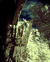 Abandoned barn entrance, infrared