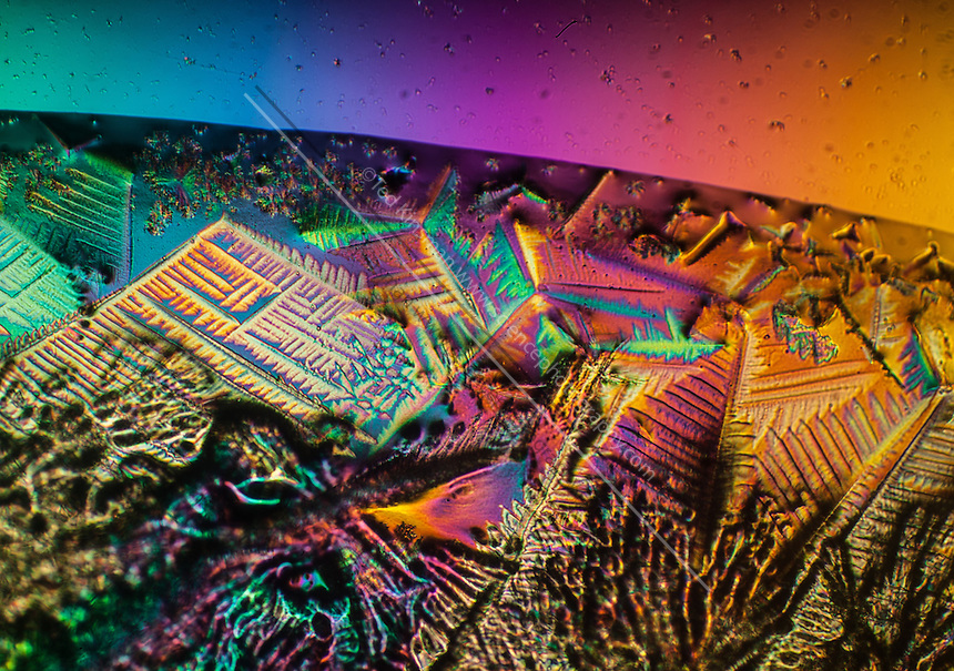 Hydroponic Chemicals dried and photographed under polarized light.  The magnification was 100x on a 35 mm sensor. Polarized light microscope image of rapid-start, a nutrient chemical used in the hydroponic growth of plants.
