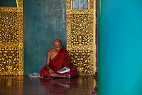 Monk reading Magazine, Shwedagon Pagoda, Yangon