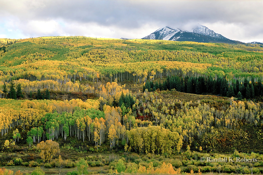 Aspen trees in fall color fill the landscape around Chair Mountain, Gunnison National Forest, Colorado