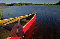 A red canoe and paddle on the shore of Craig Lake at Craig Lake State Park near Michigamme Michigan.
