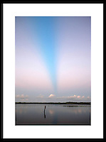 Everglades, Florida.  © Andrew Shurtleff