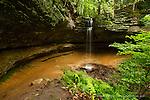 Memorial Twin Falls Munising Michigan Michigan Nature Association
