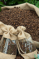 Coffee Beans in Burlap Bags