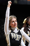 28 January 2016: Wake Forest cheerleader. The Wake Forest University Demon Deacons hosted the Florida State University Seminoles at Lawrence Joel Veterans Memorial Coliseum in Winston-Salem, North Carolina in a 2015-16 NCAA Division I Women's Basketball game. Florida State won the game 96-55.