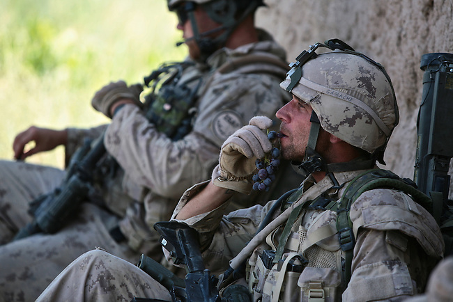 A Canadian soldier with the Royal 22nd Regiment munches on grapes that he has found while on patrol in the village of Zalakhan in Kandahar province, Afghanistan. Aug. 7, 2009 DREW BROWN/STARS AND STRIPES