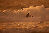 DION AGIUS (AUS) SEIGNOSSE, France (Tuesday, September 29, 2009) - Free surfing at Plage des Bourdaines. Photo: joliphotos.com