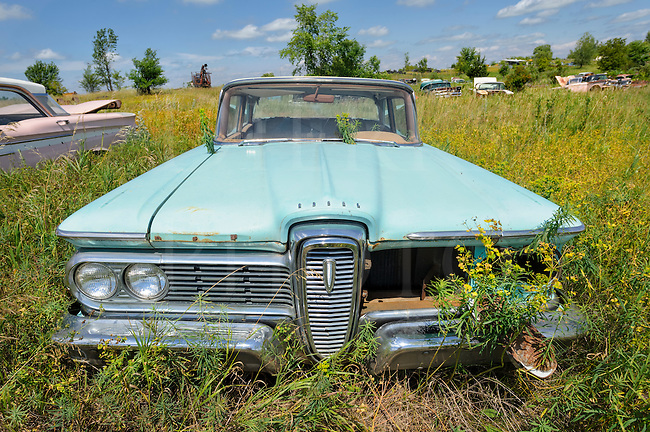 Edsel car sitting in a summer junkyard surrounded by weeds, baby blue in color...with another baby pink one beside it!
