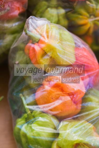 France/DOM/Martinique/ Saint-Pierre: le marché - détail étal piments végétariens