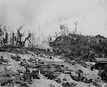 Marines of the 1st Division move toward another objective, inch by inch on theier bellies on Peleliu Island, the Gibralter of the Rising Sun in the Palau Group of the Caroline Islands.
