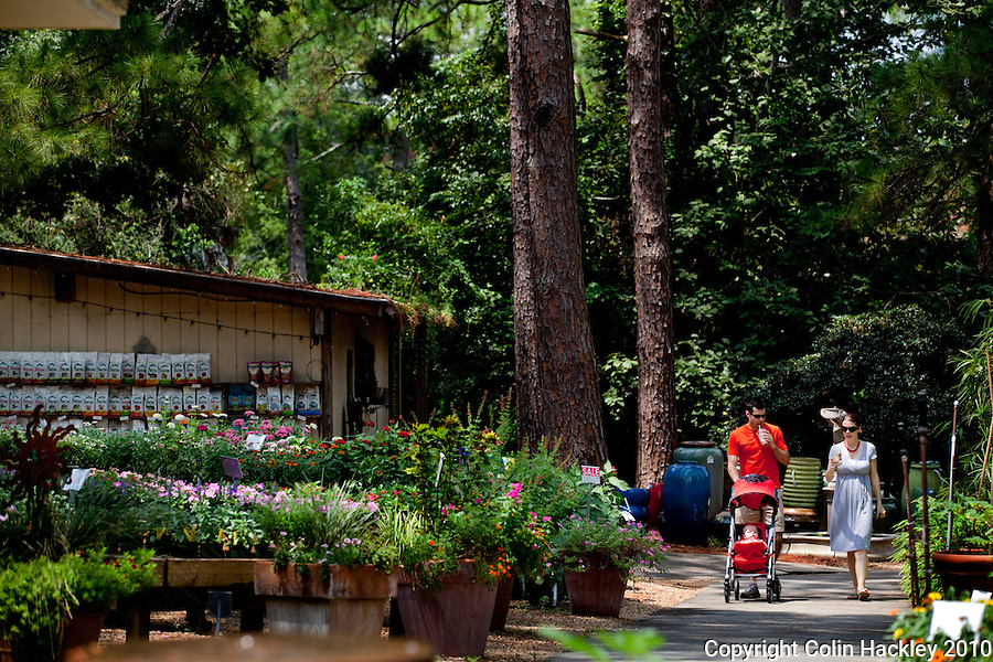 TALLAHASSEE, FLA. 8/21/10-VISITTALLY-082110-HACKLEY-Jon, Karen and Susan age five months stroll beneath the pines at Tallahassee Nurseries...COLIN HACKLEY PHOTO