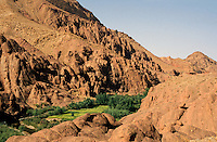 Lush oasis in the Dades Valley, Morocco.