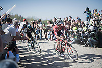 Jasper Stuyven (BEL/Trek-Segafredo) at the Cysoing to Bourghelles sector<br /> <br /> 115th Paris-Roubaix 2017 (1.UWT)<br /> One Day Race: Compi&egrave;gne &rsaquo; Roubaix (257km)