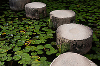 The characteristic round stepping stones of the Garyukyo Bridge lead across the lily pad-thick waters at the strolling garden of  Kyoto's Heian Shrine.