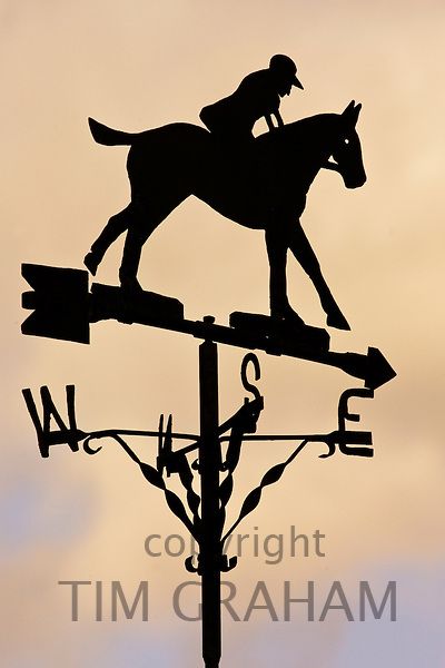 Horse and rider shaped weather vane pointing East, United KingdomMet