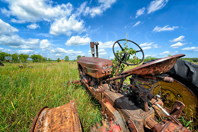 This junkyard in the western Minnesota prairie was very large and mostly covered by high grass. In this section of farm equipment there was a lot of extra room, so the tractors were set down anywhere; you can see others poking up here and there all around. This particular one drew my attention because of the little sprig bravely reaching for the wild blue yonder from the steering wheel, which gave this image a title. Determination or The Resiliency of Hope might have made a good one too. Here was the carcass of a hardworking machine with its bones bleaching in the sun forevermore, but there is new life reaching out from the remains of the old, like a seed. Its hard to stop Mother Nature and here&rsquo;s proof again of that fact. So, curiosity piqued, I waded on over through the tall grass for a closer look as to what could be done with a wide angle lens and that even wider prairie sky.<br /> <br /> I have never heard of a Massey Harris tractor before and probably won't hear of one again, but somewhere out there, a guy restoring one is looking for parts and his search might someday lead him to this very same spot.<br /> <br /> Monthly Newsletter sign up at Dierks Photo on Facebook...