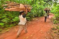 Women with firewood gathered in protected forest, Boabeng-Fiema Monkey Sanctuary, Ghana