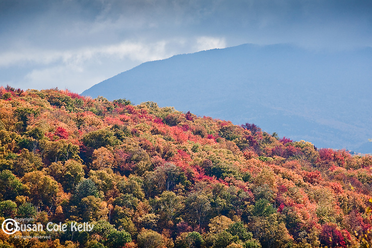 Fall foliage at Kinsman Notch, White Mountain National Forest, NH
