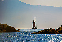 Yacht, sailing boat, Puget Sound, Victoria, Canada, Olympic Mountains, Washington State, USA, 200809101277..Copyright Image from Victor Patterson, 54 Dorchester Park, Belfast, N Ireland, BT9 6RJ...Tel: +44 28 9066 1296.Mob: +44 7802 353836.Email: victorpatterson@mac.com..IMPORTANT: Go to www.victorpatterson.com and click on Terms & Conditions