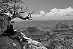 Artist at work, Grand Canyon, North Rim