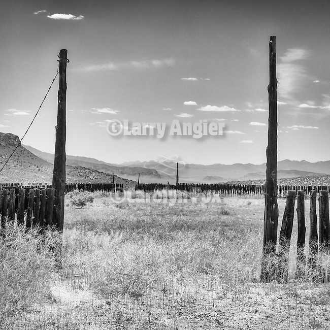 Old wooden corral, Timber Mt. Pass, Nev.