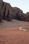 Tents in Wadi Rum