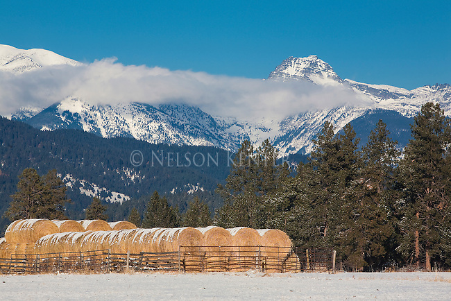 The winter's supply of hay is fenced in from deer and elk below the Mission Mountains in Montana