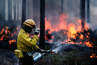 Fire fighters set fires and carefully monitor the flames in the Okefenokee National Wildlife Refuge. A prescribed burn can help reduce the thick undergrowth in the jungle-like <br />