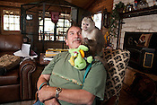 Dave Viguers and Eldon, a Cinnamon Capuchin monkey, spend time together inside the house. Dave and Sandy Viguers live with monkeys at their home outside of Lampasas, Texas.  February 22, 2009.