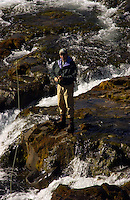 Atlantic Salmon Catch and Release Fly Fishing in Iceland. Fly fisherman in Skriduhylur Svalbardsa river.