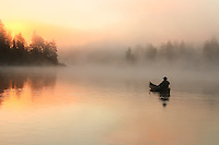 &quot;Foggy Glow&quot;<br />
